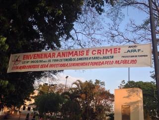 MG: Associação faz protesto em Formiga após envenenamentos de cães