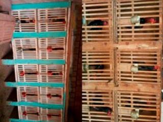 PM fecha rinha galos e flagra maus-tratos a animais em Fátima do Sul, MS