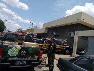 Polícia descobre rinha de galo no bairro Porto Alegre em Teresina, PI