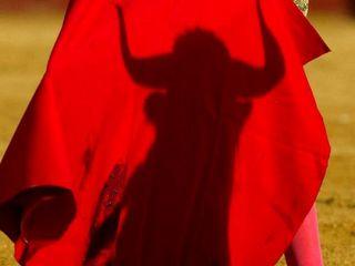 PAN é o único partido português que defende a proibição das touradas