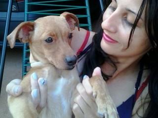 Professora adota cão abandonado pelo tutor em hospital de Araçatuba, SP