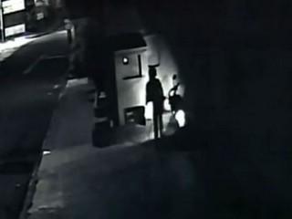 Câmera flagra mulher furtando ração deixada para cachorros de rua