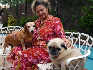 Tumor de mama representa 40% dos casos de câncer em cães, diz Unesp
