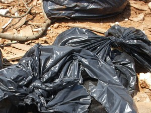SP: Prefeitura de Osvaldo Cruz investiga descarte 'clandestino' de animais