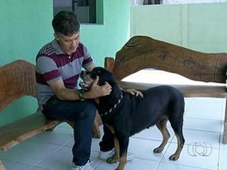 Animais 'de estimação' passam por cirurgia após câncer de mama em Gurupi, TO