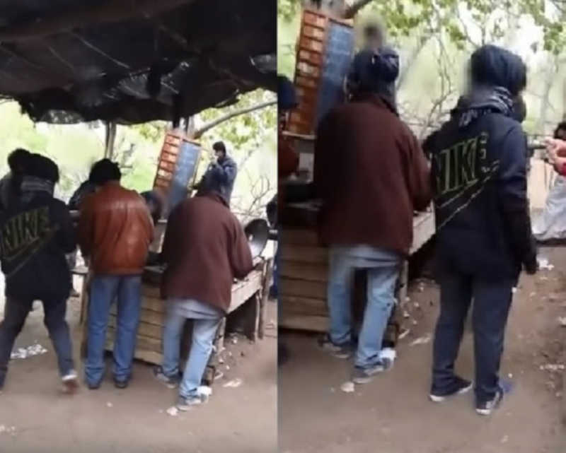 Menores são filmados levantando apostas e entregando drogas em uma corrida de galgos na Argentina