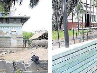 Zoológico portenho se encontra em ruínas e crise no local cresce