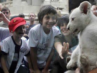 Argentina zoologico fechado H