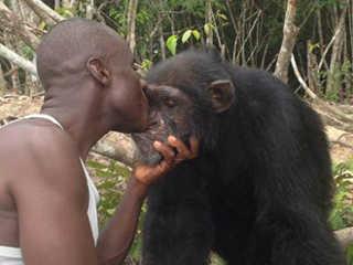CostaDoMarfim homem nega abandonar chimpanze H