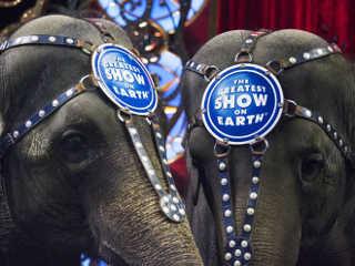 EUA circo aposentadoria elefantes H