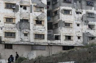 Diante de crise, animais de zoo de Gaza morrem de fome