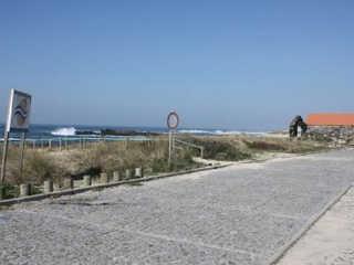 Portugal caes mortos malvasez H
