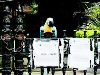 RJ Rio descaso zoo H