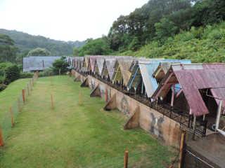 Prefeitura de Gramado (RS) com novo espaço para animais abandonados