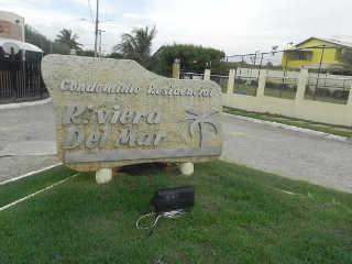 Moradores se indignam com crime contra gatos em Aracaju, SE