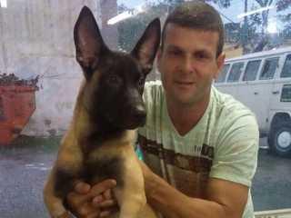 Guarda arrisca a própria vida e salva cães presos após vazamento de gás