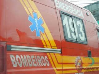 Bombeiros e ONG socorrem cão atropelado com ajuda de veterinário em Brusque, SC