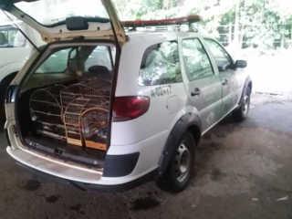 Policia Militar Ambiental apreende pássaros por maus tratos e adulteração de anilhas no município de Marília, SP