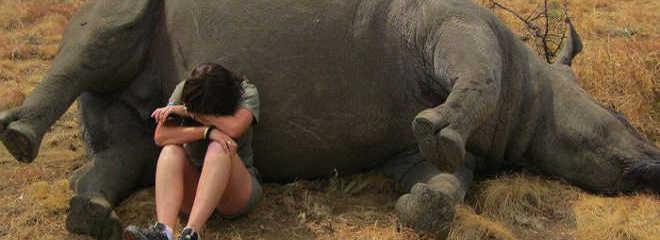 AfricaDoSul foto funcionaria chorando rinoceronte morto D