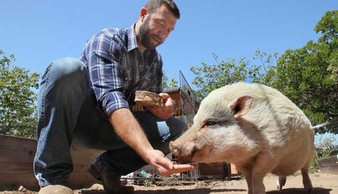 EUA SanDiego documentario santuario animais