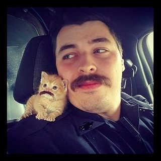 Polícia encontra gato bebé abandonado e torna-o o seu companheiro