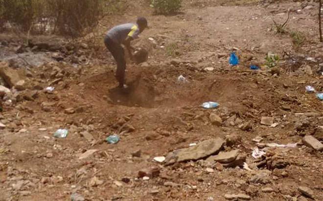 Como um rapaz na Índia usou o Twitter para pegar o homem que envenenou 15 cachorros abandonados