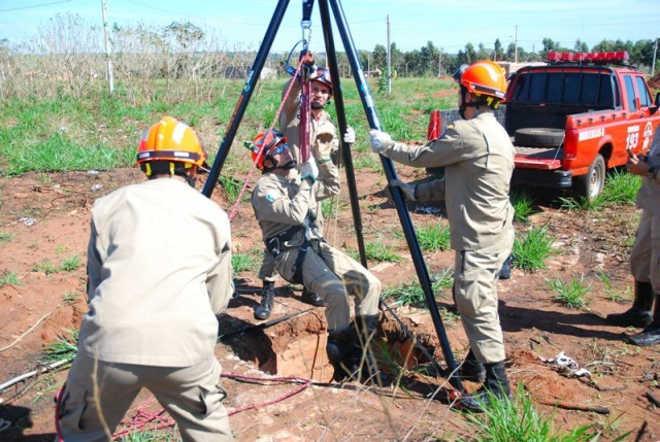 Tamanduá cai em buraco de 3 metros e é resgatado pelos Bombeiros em Bataguassú, MS