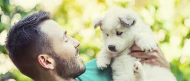 Nova Zelândia tem 'licença de paternidade' para cuidar de animais