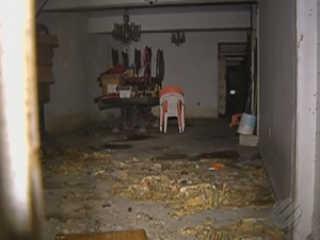 Moradores denunciam abandono de cães em casa no centro de Belém, PA