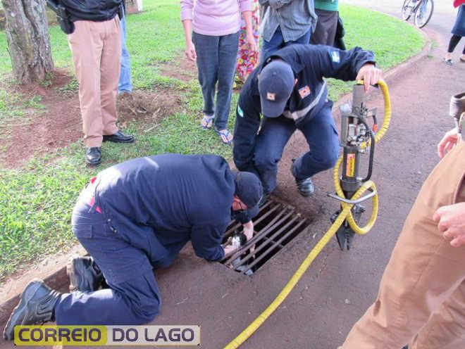 PR SantaHelena resgatam gato bueiro