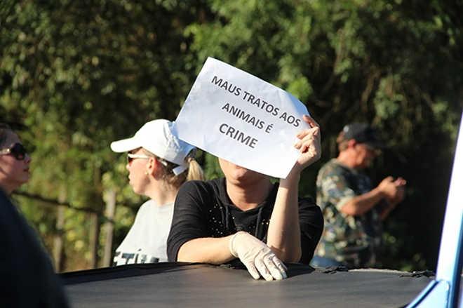 Protesto e confusão por atropelamento de cachorro em Santa Cruz do Sul, RS