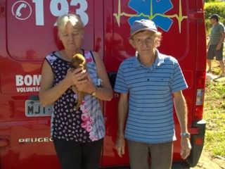 Resgatado de bueiro à beira da morte, filhote de cão tem final feliz, em Criciúma, SC