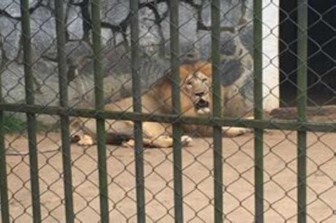 SE Aracaju visitantes denunciam tratamento
