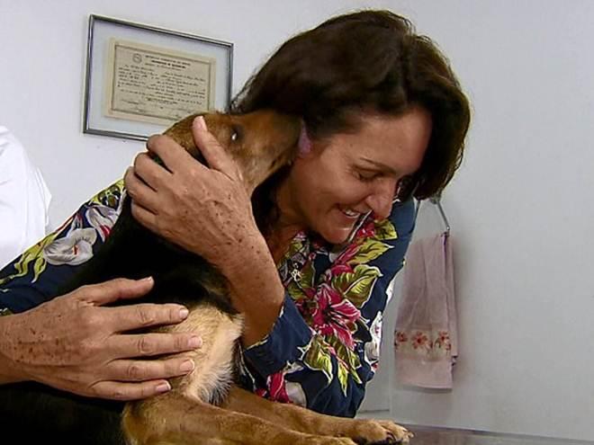 SP Descalvado mulher resgate animais pedagio3