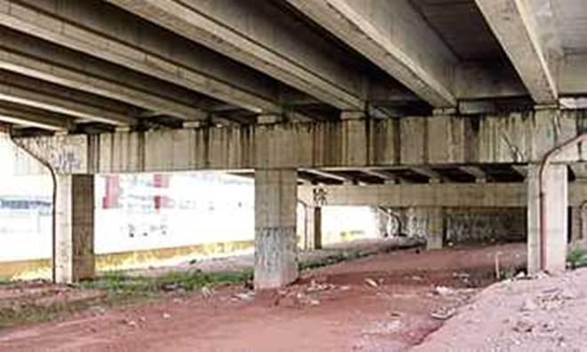 Cães de ONG despejada são removidos de área embaixo do viaduto, em Mauá, SP