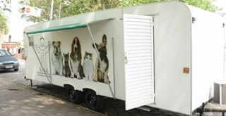 Cubatão (SP) promove mutirão de castração de cães e gatos no dia 26