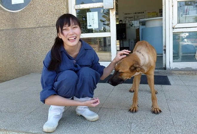 TAIWAN suicidio veterinaria