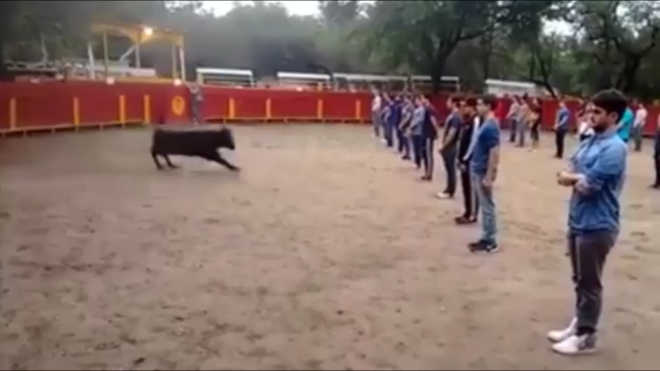 TOURADAS video 56229