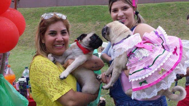 Ação ajuda a coletar rações para entidades que cuidam de animais de rua em Manaus, AM