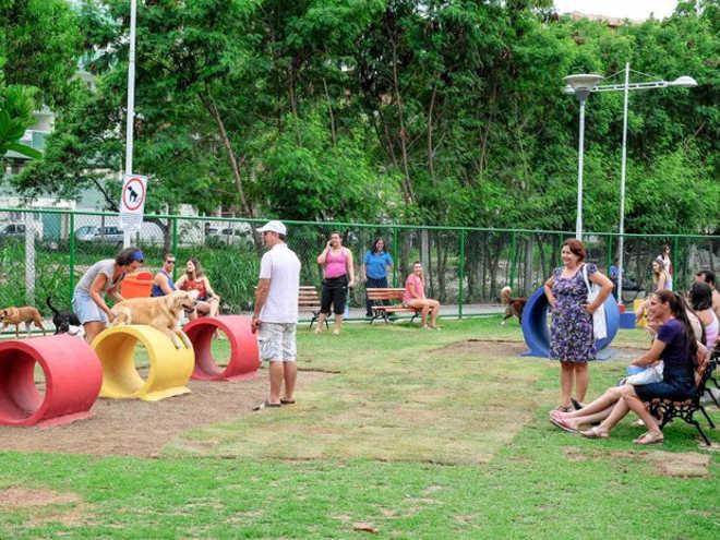 Vitória (ES): Jardim da Penha vai ganhar praça especial para cães