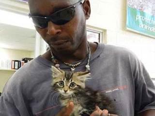 Homem corta lateral de seu carro para salvar gatinho preso dentro da lataria