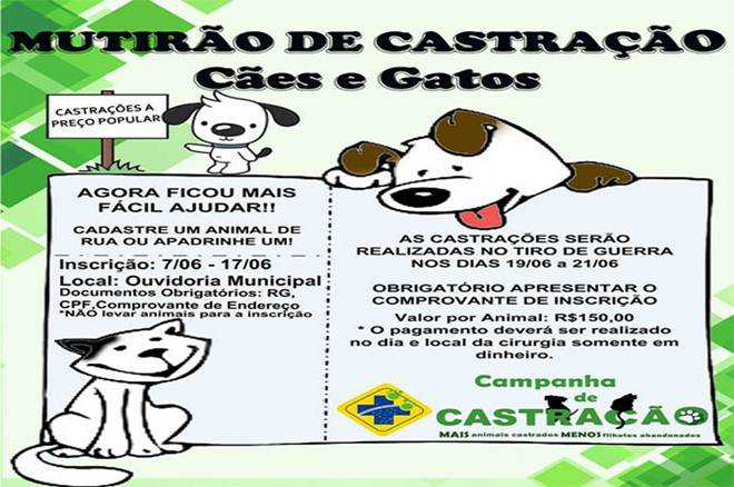 Mutirão de castração de cães e gatos em Alfenas, MG