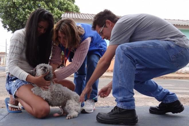 Campanha de vacinação antirrábica é iniciada na zona rural de Uberlândia, MG