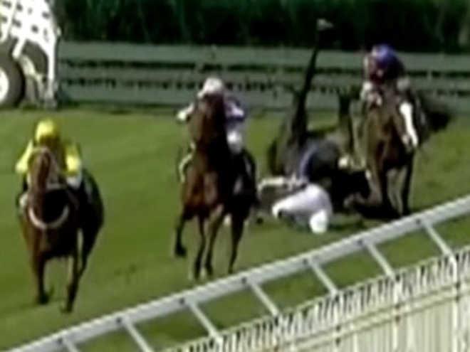 Trágico dia de corrida na Nova Zelândia termina com três cavalos sendo eutanasiados