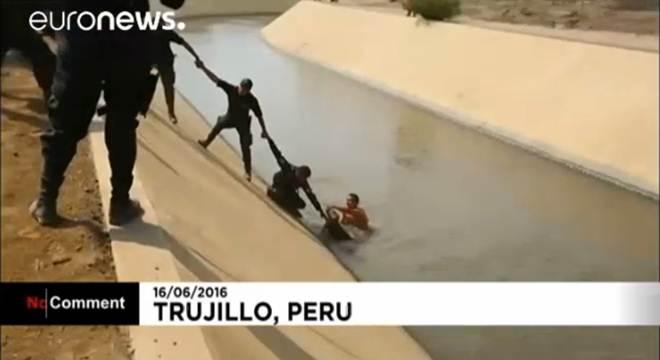 Polícia peruana salva cão preso na água com cordão humano