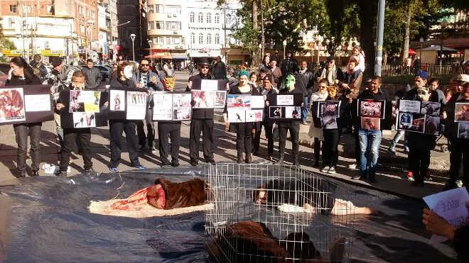Porto Alegre (RS) lidera ato nacional de repúdio contra uso de peles de animais
