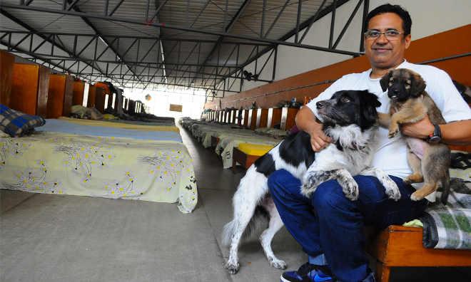 Neste abrigo em SP os moradores de rua podem levar seus animais