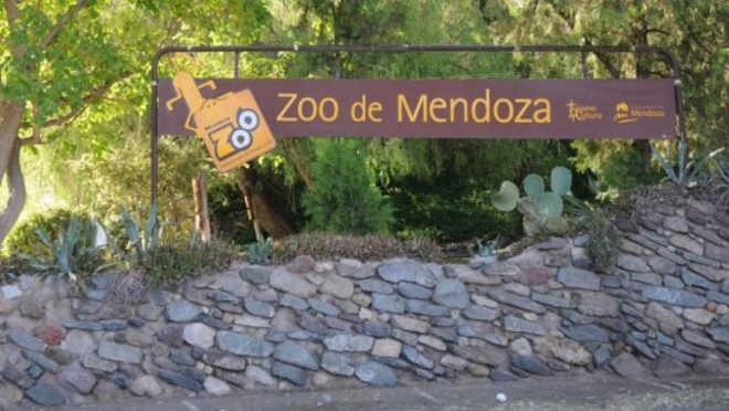 Defensores dos animais repudiam o leilão de animais do Zoológico de Mendoza, na Argentina