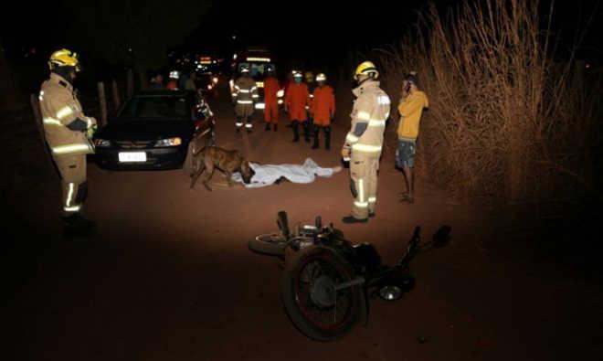 Cachorro fica ao lado de tutor morto em acidente no Distrito Federal