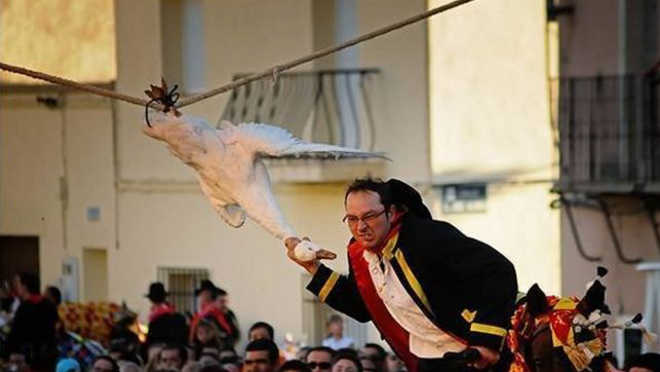 Pedem para abolir uma festa na qual se arranca a cabeça de vários gansos